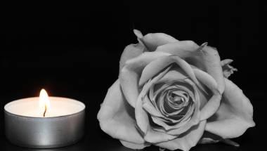 Wir trauern um Wilfried Kogler